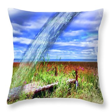 Adding Fresh Water Shortly Throw Pillow by Cathy  Beharriell