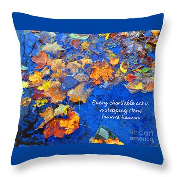 Throw Pillow featuring the photograph Adironack Laughing Water Charity by Diane E Berry