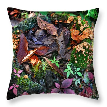 Adirondack Autumn Bouquet Throw Pillow