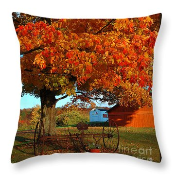 Throw Pillow featuring the photograph Adirondack Autumn Color by Diane E Berry