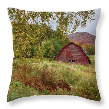 Adirondack Barn In Autumn Throw Pillow