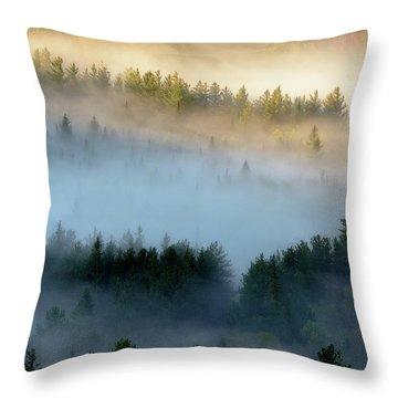 Adirondack Fog Throw Pillow