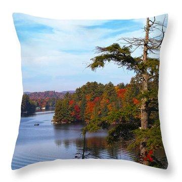 Adirondack View Throw Pillow