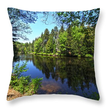 Adirondack Waters Throw Pillow