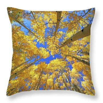 Throw Pillow featuring the photograph Admiring Aspens - Colorado - Autumn by Jason Politte