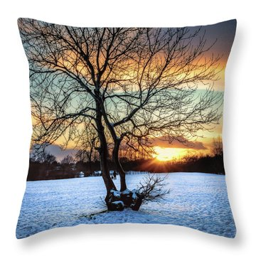 Admiring The Sunet Throw Pillow