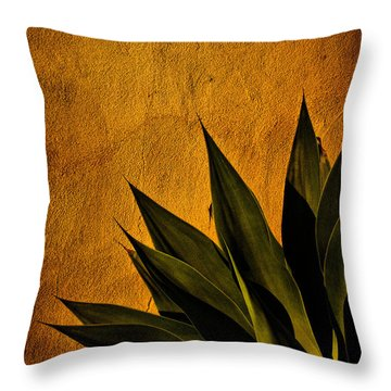 Adobe And Agave At Sundown Throw Pillow