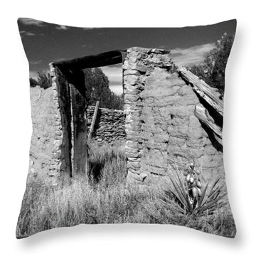 Adobe Wall And Door Throw Pillow