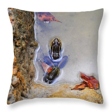 Throw Pillow featuring the photograph Adopted Amphibian by Al Powell Photography USA