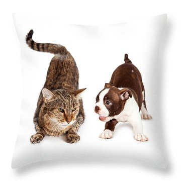 Adult Cat Annoyed With Playful Puppy Throw Pillow