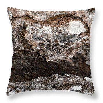 Throw Pillow featuring the photograph Adventure by Ray Shrewsberry