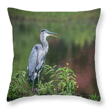 Advice From A Great Blue Heron Throw Pillow