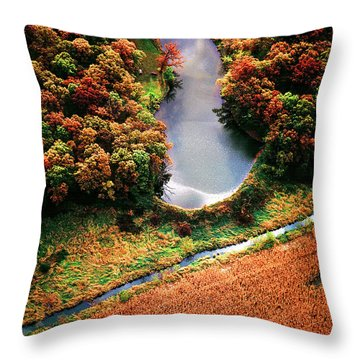 Throw Pillow featuring the photograph Aerial Farm Big Foot Pond by Tom Jelen