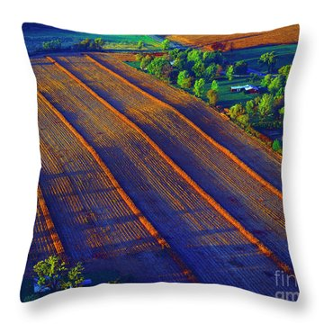 Aerial Farm Field Harvested At Sunset Throw Pillow