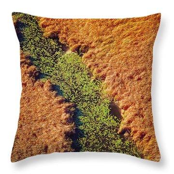 Aerial Farm Stream Lillies  Throw Pillow