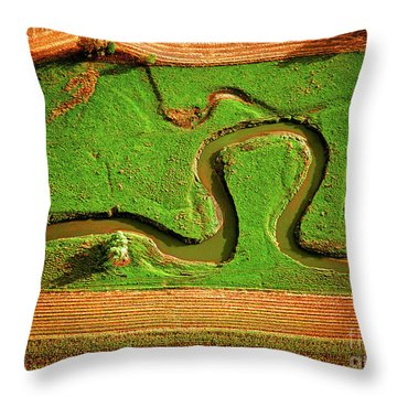 aerial, farm, stream, northern, Illinois, farms, meandering  Throw Pillow