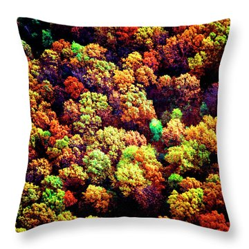 Throw Pillow featuring the photograph Aerial Farm Tree Tops Fall Ff by Tom Jelen