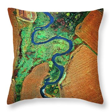 Throw Pillow featuring the photograph Aerial Farm Wet Lands Stream  by Tom Jelen