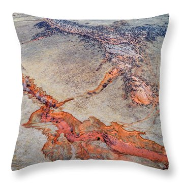 aerial landscape abstract of Colorado foothills Throw Pillow