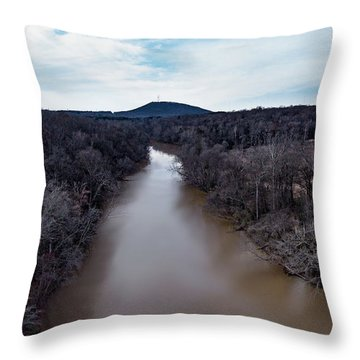 Aerial River View Throw Pillow