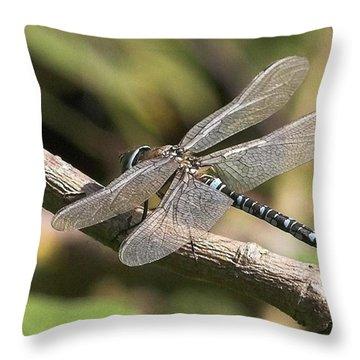 Macro Throw Pillows