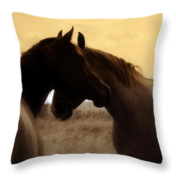 Affinity Throw Pillow