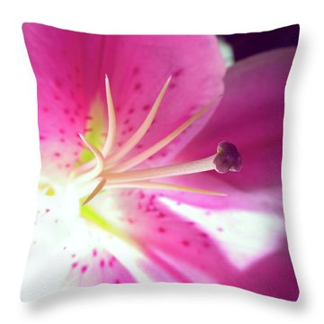 Aflame Throw Pillow