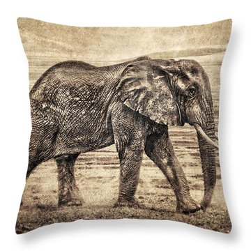Africa Series - Elephant Throw Pillow by Brett Pfister