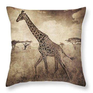 Africa Series - Giraffe Throw Pillow by Brett Pfister