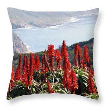 African Aloe And False Bay Throw Pillow