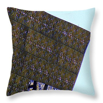 African American History And Culture 4 Throw Pillow by Randall Weidner