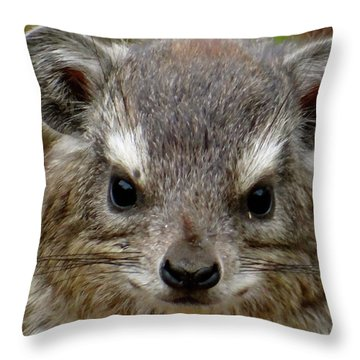 African Animals On Safari - A Child's View 6 Throw Pillow