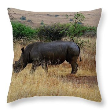 African Animals On Safari - One Very Rare White Rhinoceros Right Angle With Background Throw Pillow