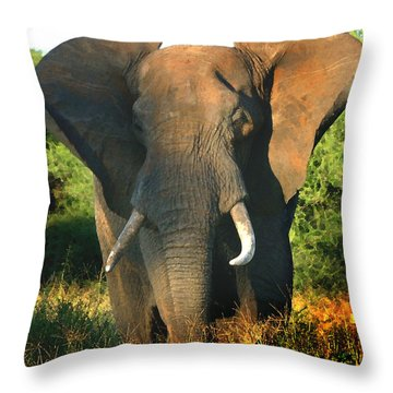 African Bull Elephant Throw Pillow