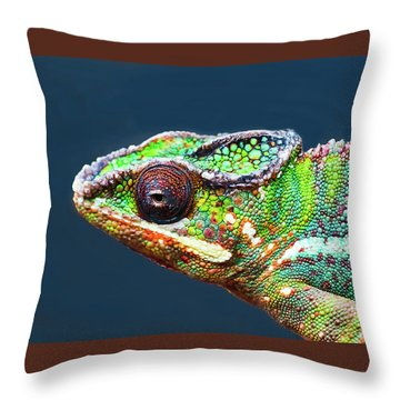 Throw Pillow featuring the photograph African Chameleon by Richard Goldman