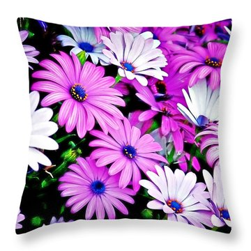 African Daisies - Arctotis Stoechadifolia Throw Pillow by Christine Till