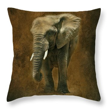 African Elephant With Textures Throw Pillow