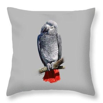 African Grey Parrot C Throw Pillow by Owen Bell