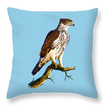 African Hawk Eagle Throw Pillow by Anthony Mwangi
