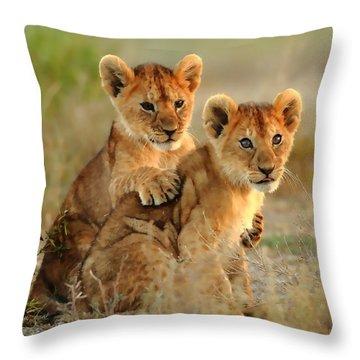 African Lion Cubs Throw Pillow