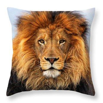 African Lion 1 Throw Pillow