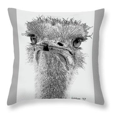 African Ostrich Sketch Throw Pillow