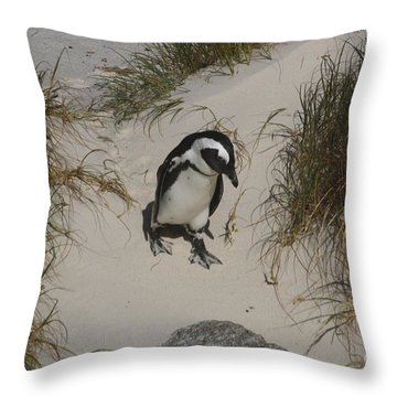 African Penguin On A Mission Throw Pillow