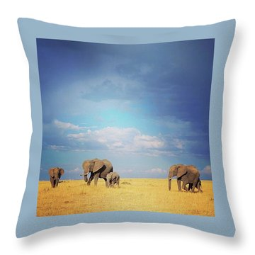 African Perfection Throw Pillow