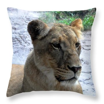 Throw Pillow featuring the photograph African Queen by John Black