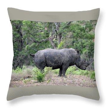 African Safari Naughty Rhino Throw Pillow