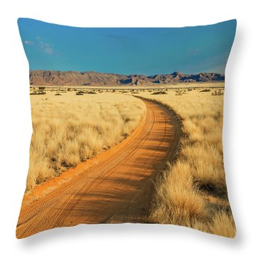 African Sand Road Throw Pillow