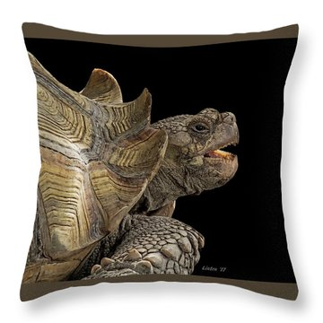 African Spurred Tortoise Throw Pillow