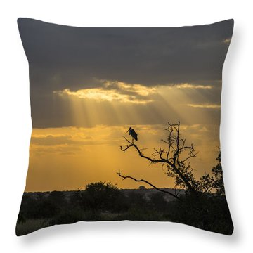 African Sunset 2 Throw Pillow