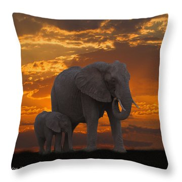 African Sunset-k Throw Pillow